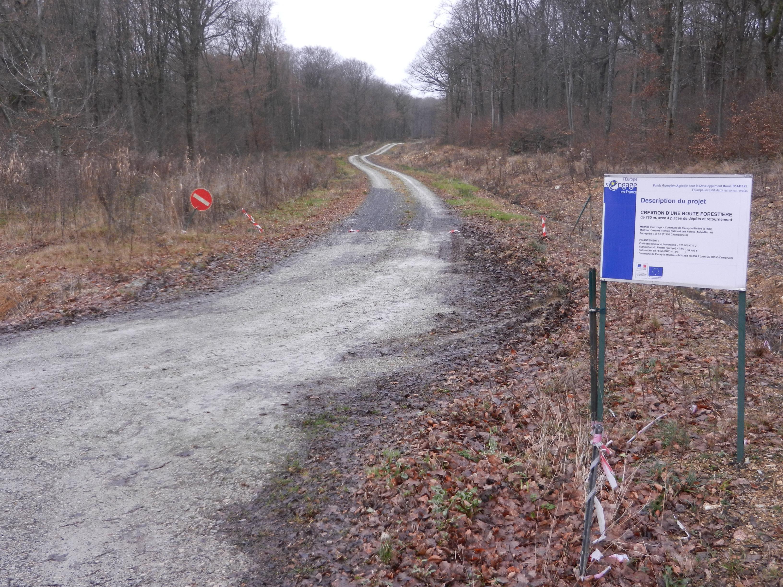 la-recente-route-forestiere-pour-favoriser-la-gestion-des-ventes-de-bois